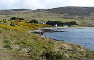 Falkland Islands, farm,arctic-travels.com